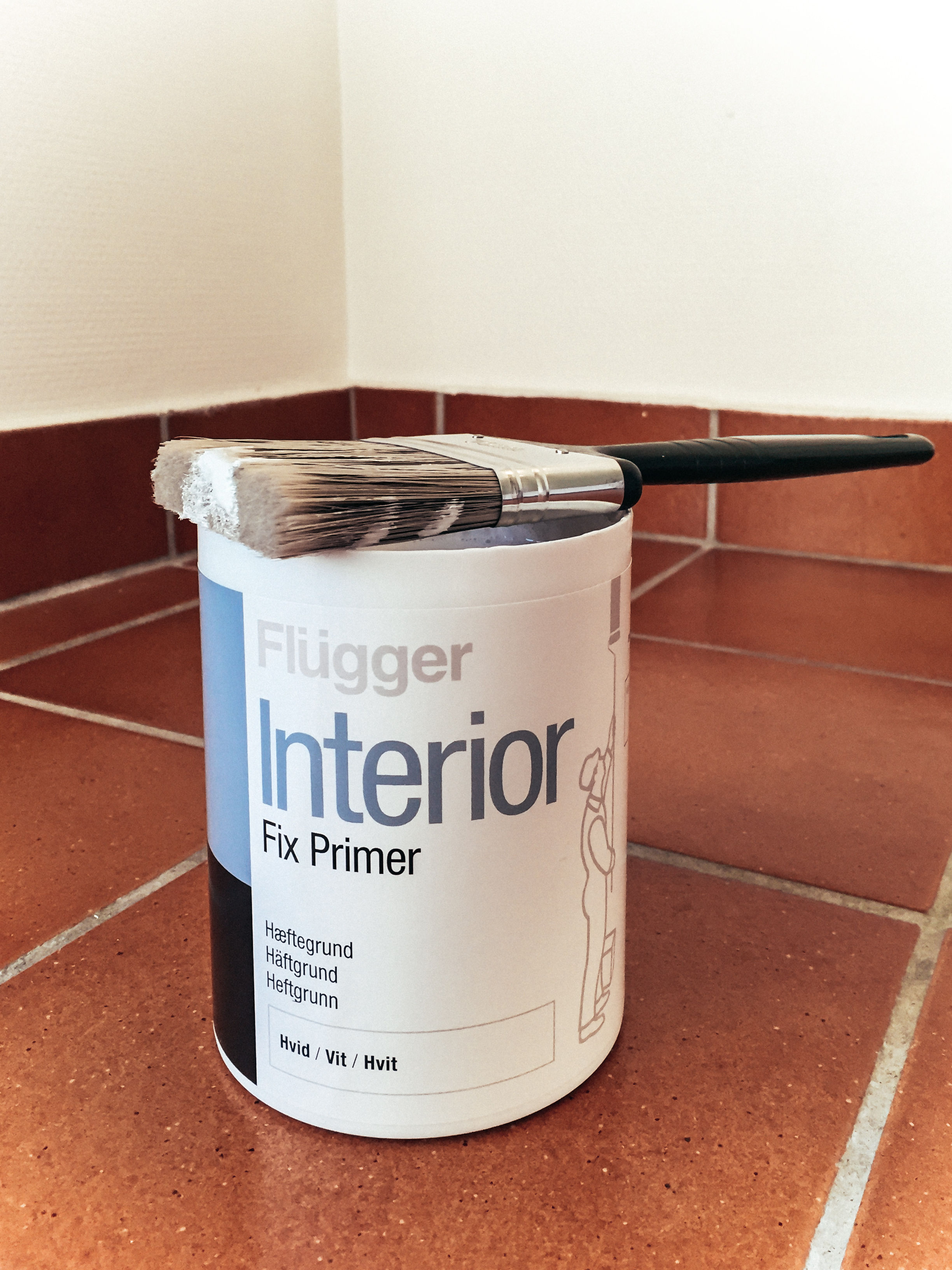 måla om badrumsgolvet
